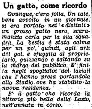 File:Gatto.jpg
